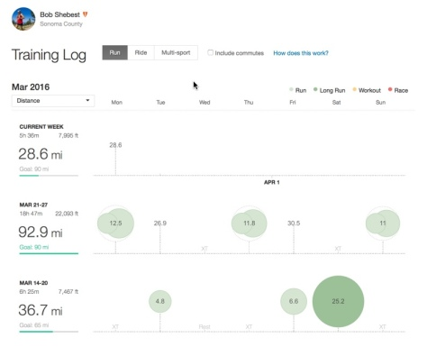 Spring Break Training – 3/19 – 3/28 (10 days). Weeks in ascending order. Source: Strava.com